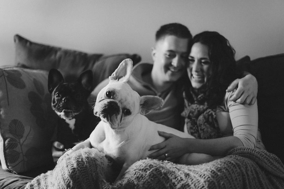 french-bulldog-engagement-photo