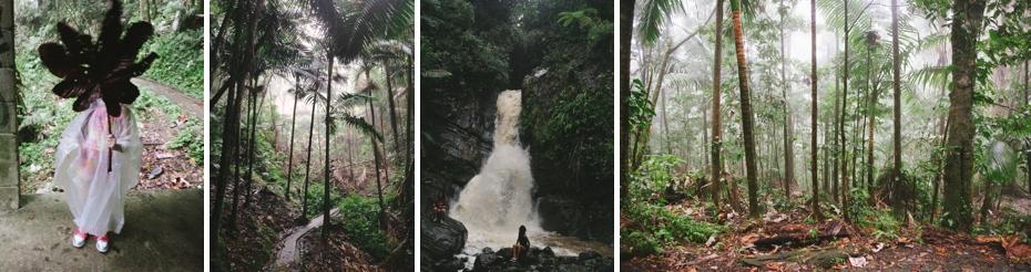 El-Yunque-photo
